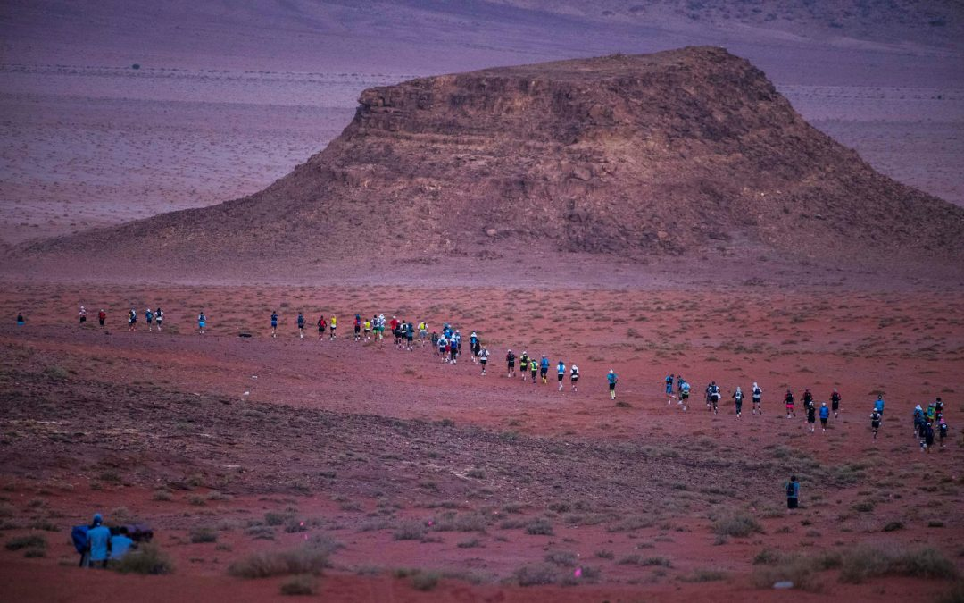 Ultra X Jordan 2019: Race Director's Report
