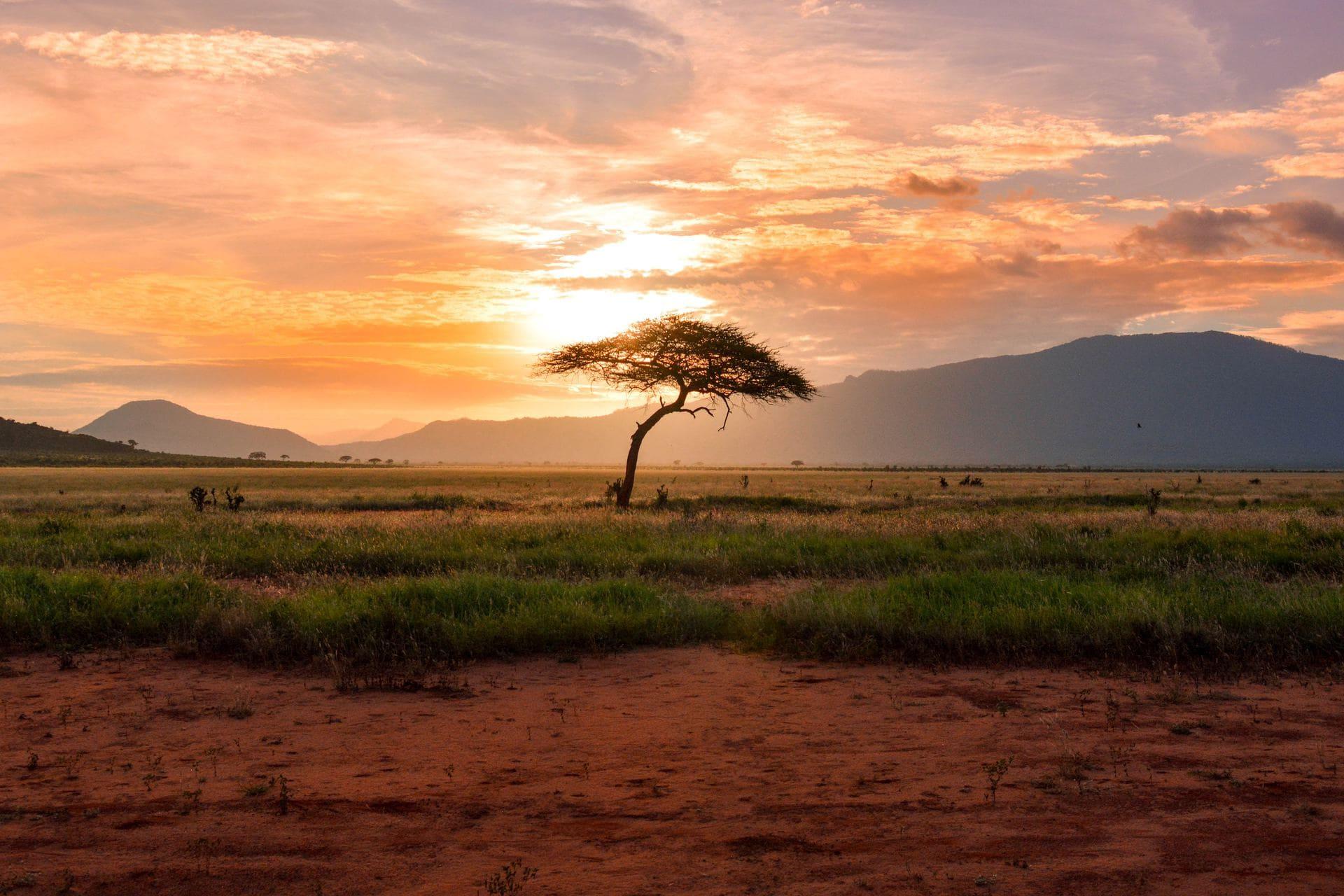 For Rangers Ultra Marathon Kenya Desert Safari