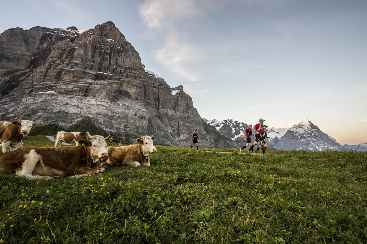 Best Ultra Marathons in Europe - eiger ultra trail