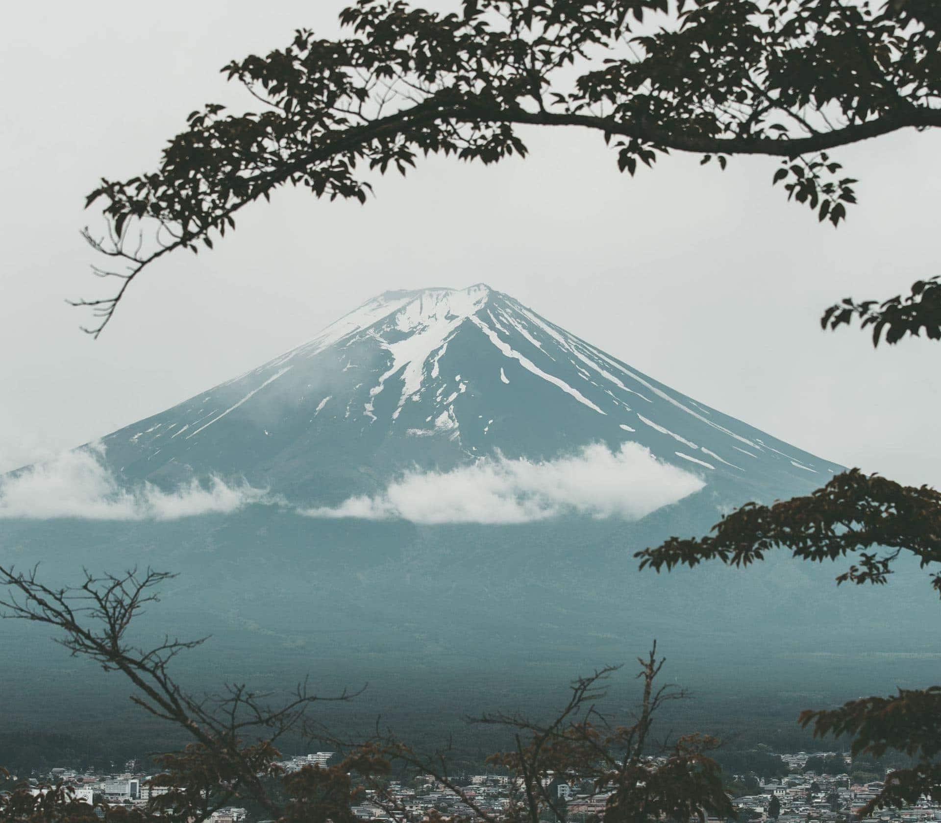 Ultra Trail Mount Fuji Ultra Marathon